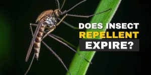 Does Insect Repellent Expire?