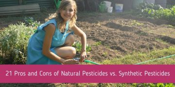 21 Pros and Cons of Natural Pesticides vs. Synthetic Pesticides