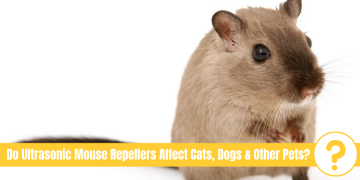 "picture of mouse with text ""Do Ultrasonic Mouse Repellers Affect Cats, Dogs & Other Pets?"""