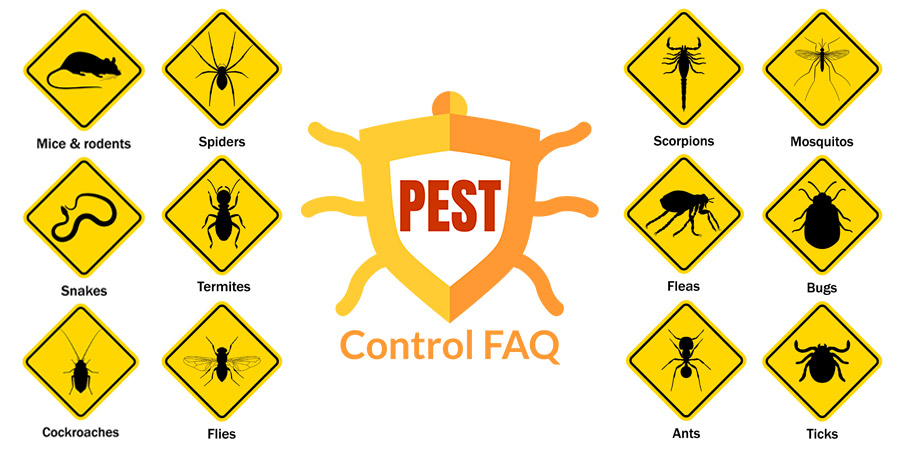 Pest Control FAQ About image