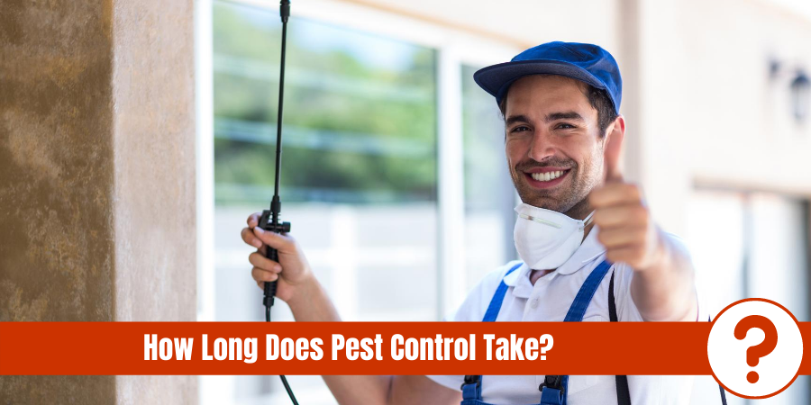 "Exterminator giving thumbs up with text"" How long does pest control take?"