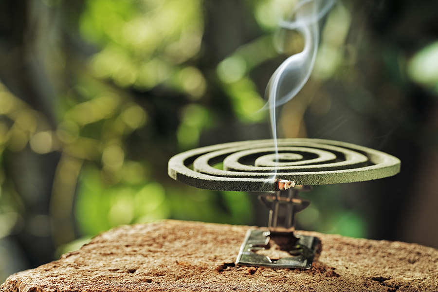Green spiral insect repellent mosquito coil incense smoking