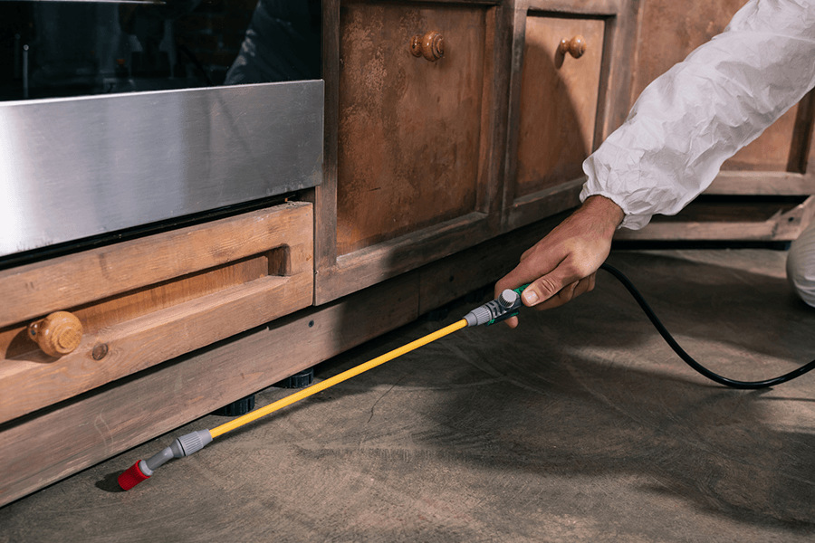 Cropped image of pest control worker spraying pesticides under cabinet in kitchen