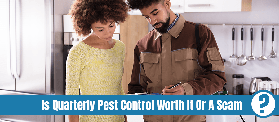 Young male pest control worker showing invoice to woman in domestic kitchen with text: is quarterly pest control worth it or a scam