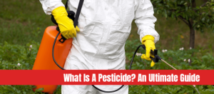 Man spraying pesticides in vegetable garden with text: What is a pesticide an ultimate guide