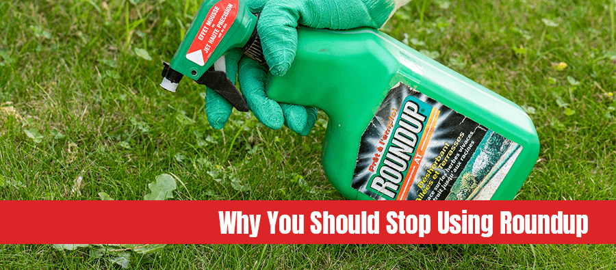 Gardener using roundup herbicide in a garden with text: Why you should stop using roundup